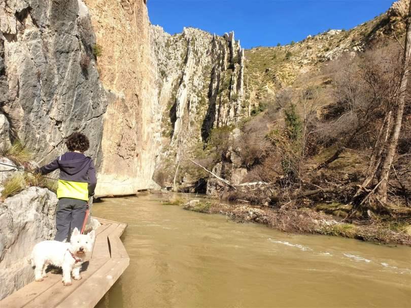 Pasarelas sobre el río, Estrecho Valloré, Montoro de Mezquita, Teruel