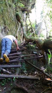 Don Chico climbing up a crumbling wood ladder in front of me