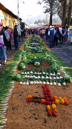 vegetable alfombra antigua semana santa