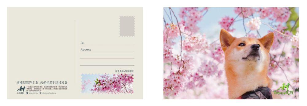 postcard_01