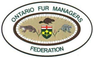cropped-logo1.jpg