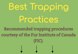 Resources - Best Trapping Practices