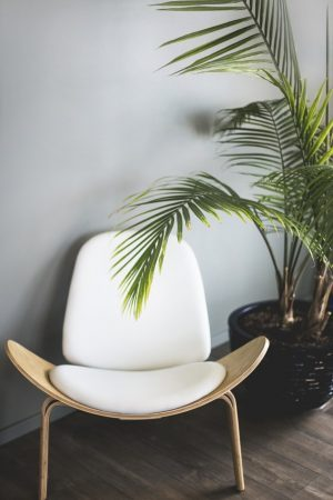 midcentury classic lounge chair with plant