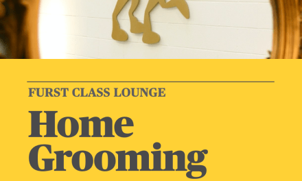 Home Grooming Guide