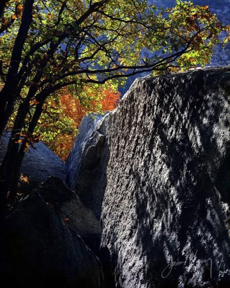 Little Cottonwood Boulders