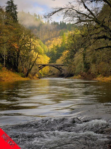 Fall on the Wilson River (new)