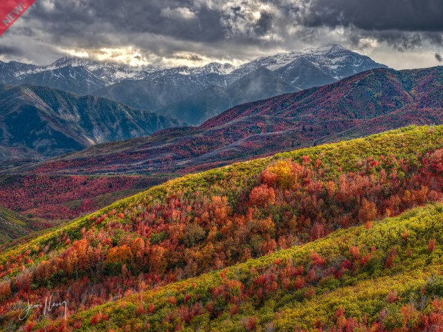 Fall on the Wasatch Back (new)