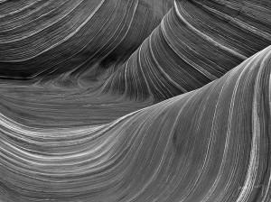 Wave Monochrome #11