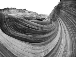 Wave Monochrome #2