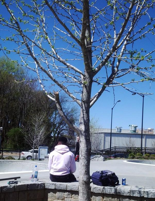 El parque de skaters fue escogido previamente antes del viaje porque no está entre los actractivos de la ciudad.