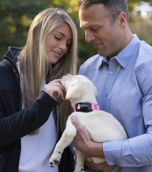 Dog Holding Image