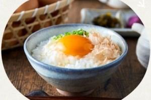 タズミの卵(30個×3ヶ月)