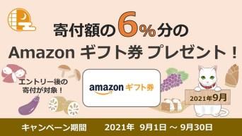 ふるプレAmazonギフト券6%キャンペーン