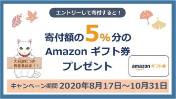 ふるプレAmazon5%キャンペーン