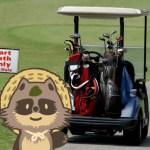 【2020年ふるさと納税】ゴルフクラブ・ゴルフ用品の還元率公開