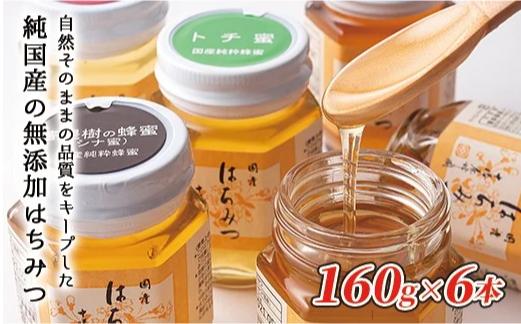 十勝養蜂園 国産はちみつ小瓶食べ比べセット<160g×6本> イメージ