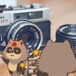 【2021年最新】ふるさと納税カメラ還元率ランキング!最大32%!