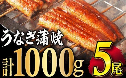 【数量限定】ふっくら肉厚うなぎ蒲焼5尾 寄付金額12,000円 イメージ