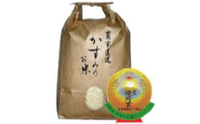美濃加茂産のお米(20kg)  イメージ