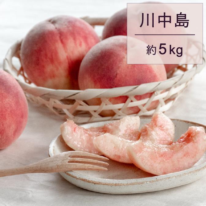 もも(川中島)5kg  イメージ