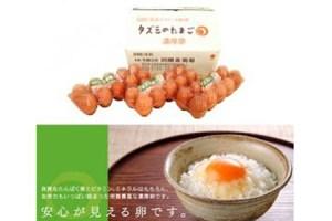 タズミの卵(30個×6ヶ月)