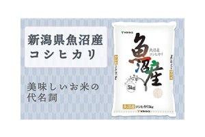 <碧南工場直送> 新潟県魚沼産コシヒカリ 10kg