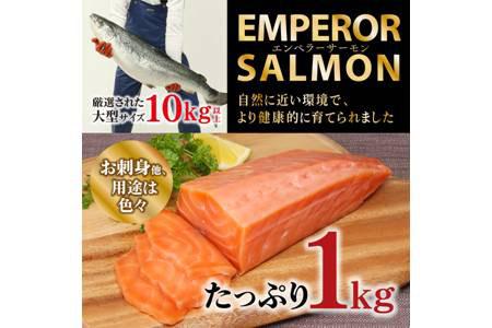 エンペラーサーモン【1kg】 イメージ