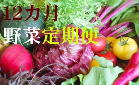 野菜【12ヶ月】定期便 香南市のお野菜詰め合わせコース  イメージ