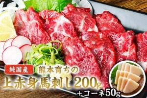 上赤身馬刺し200g(100g×2ブロック)+コーネ50g【純国産熊本肥育】