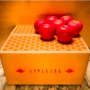 ふじ発祥地限定 元祖ふじりんご【サンふじ】ご家庭用 約10kg 高糖度 青森りんご