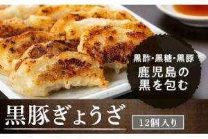 黒豚餃子セット(12個入×10パック)