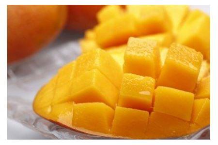 鹿児島県産 美味しさまるごと冷凍マンゴー!約1kg イメージ