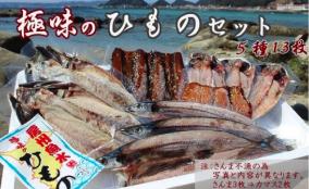 【厳選国内産】極味のひものセット 13枚