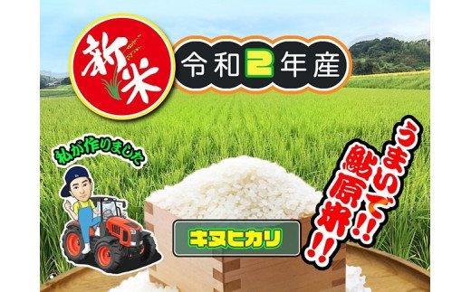 淡路島 鮎原米 キヌヒカリ 5kg イメージ