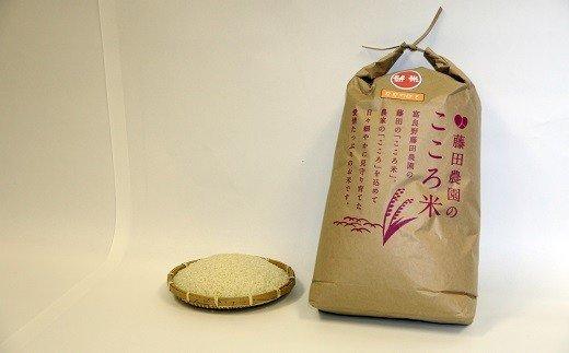 【2020年度米】お米ななつぼし 10kg イメージ