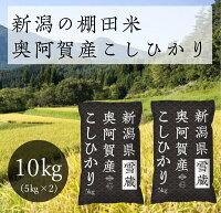 <新米> 米 10kg 5kg×2袋 令和3年 奥阿賀産こしひかり イメージ