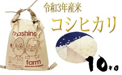 【令和3年産】羽生市産コシヒカリ10kg イメージ