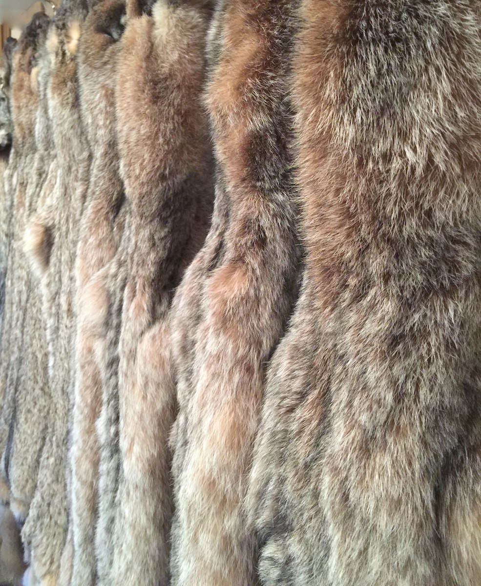 Commercial Tanned Pelts and Furs | FurWest for Lynx Pelt  166kxo