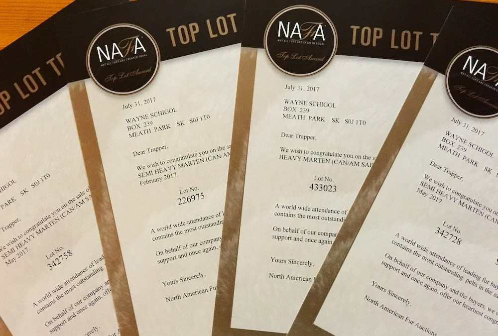 Top Lot Recognition from NAFA – Exemplary Wild Fur