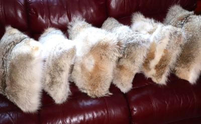 Coyote Fur Pillows