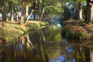 The stream close to Furzehill Farm CL
