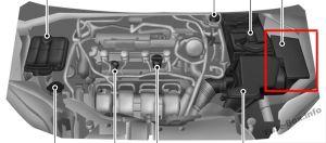 Ford Focus (20122014)