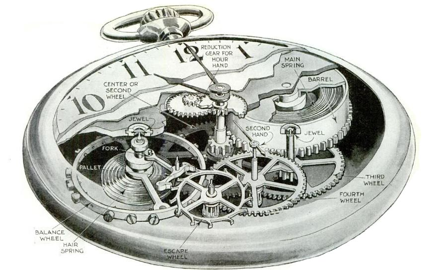 pocket watch movement diagram trailer plug wiring 7 way australia of common antique watches