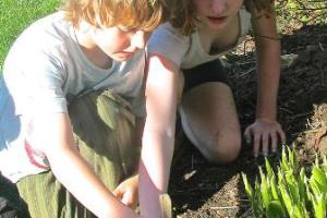 FUSF Ferry Beach -Children plant seeds