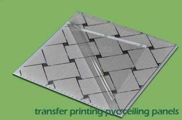 Printed PVC Wall Panels