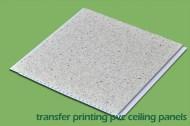 Printing PVC
