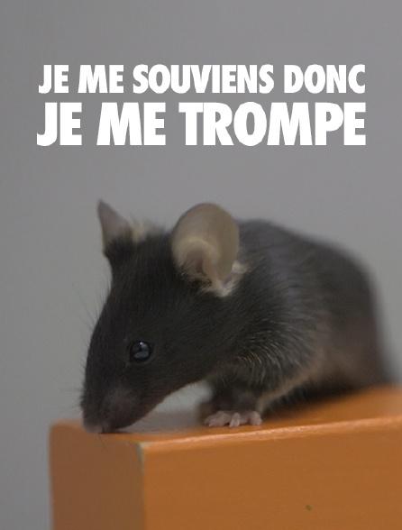Je Me Souviens Donc Je Me Trompe : souviens, trompe, Souviens, Trompe, Streaming, Molotov.tv