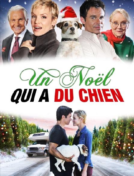 Un Noel Qui A Du Chien : chien, Noël, Chien, EBook