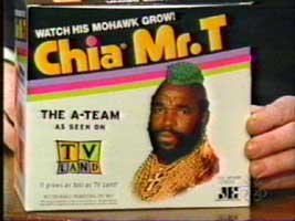 Mr. T Chia Pet with green mohawk