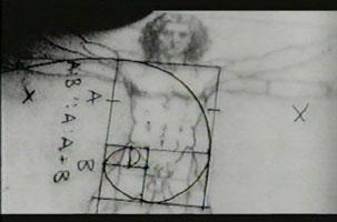 Leonardo's Golden Section
